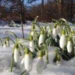 Тренды весны 2018 года, которые позволят находится всегда в Топе